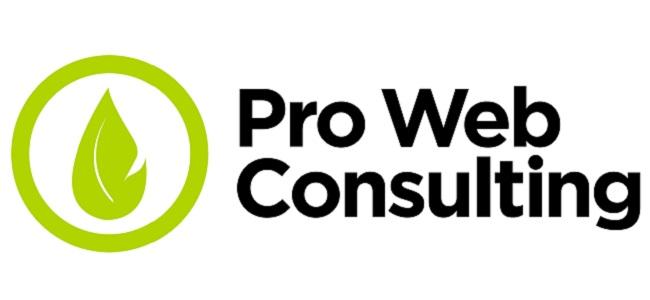 Agenzia SEO Pro Web Consulting