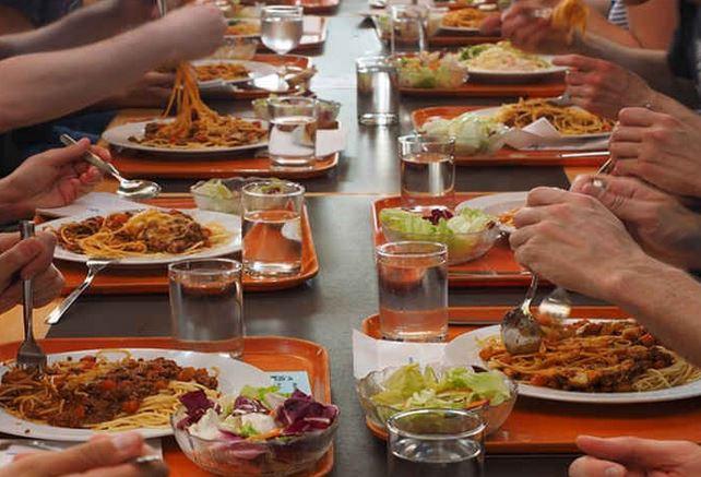Appalti mense scuola 2016-17: Ladisa batte Cir Food per il servizio a Termoli