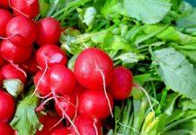 Shopping prodotti alimentari bio, boom nei campi e nel carrello della spesa