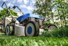 Detrazioni fiscali 2018, arriva il bonus verde per giardini e terrazzi