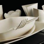 Piatti biodegradabili: una soluzione ecologica, ma anche pratica e di design